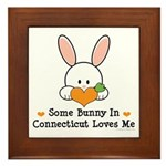 Some Bunny In Connecticut Framed Tile