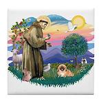 St.Francis #2 / Pekingese #1 Tile Coaster