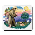 St.Francis #2 / Pekingese #1 Mousepad