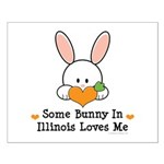 Some Bunny In Illinois Loves Me Small Poster