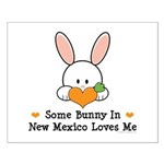 Some Bunny In New Mexico Small Poster