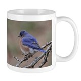 Perching Bluebird Mug