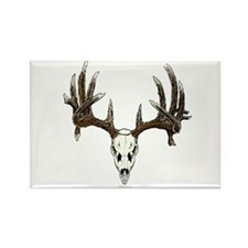 whitetail skull Rectangle Magnet
