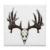 whitetail skull Tile Coaster