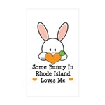Some Bunny In Rhode Island Sticker (Rectangle 10 p