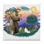 St. Francis #2 / Papillon Tile Coaster