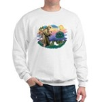 St. Francis #2 / Papillon Sweatshirt