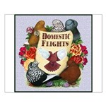 Domestic Flight Flowers Small Poster