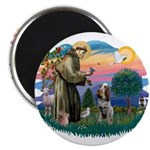 St Francis #2/ Spinone 2.25
