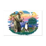 St Francis #2/ Aus Shep (tri) Mini Poster Print