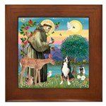 St. Francis / Greater Swiss MD Framed Tile