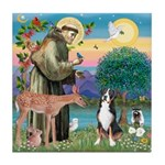 St. Francis / Greater Swiss MD Tile Coaster