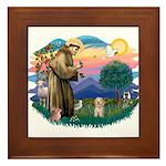 St.Fran. #2/ Havanese pup Framed Tile