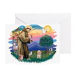 St.Fran. #2/ Havanese pup Greeting Card