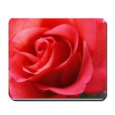 Rhapsody Rose Mousepad
