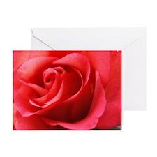 Rhapsody Rose Greeting Cards (Pk of 20)