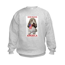PBGV with Flag Sweatshirt