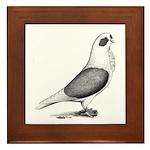 Turbiteen Pigeon Framed Tile