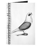 Turbiteen Pigeon Journal