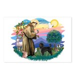 St Francis #2 / PWD (stand) Postcards (Package of