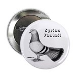 Syrian Fantail Pigeon 2.25