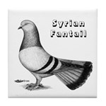 Syrian Fantail Pigeon Tile Coaster