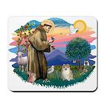 St Francis #2 / Pomeranian (#1) Mousepad