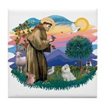 St Francis #2 / Maltese (#7) Tile Coaster