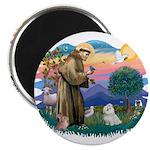 St Francis #2 / Maltese (#7) 2.25