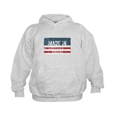 Sam Colt Made Them Equal Women's Raglan Hoodie