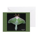 Luna Moth Greeting Cards (Pk of 10)