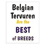 Belgian Tervuren Best of Breeds Small Poster