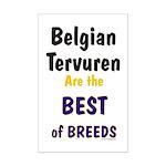 Belgian Tervuren Best of Breeds Mini Poster Print