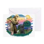 St Francis #2/ Briard (blk) Greeting Card