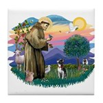 St Francis #2/ Boston Ter Tile Coaster
