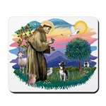 St Francis #2/ Boston Ter Mousepad