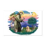 St Francis #2/ Cairn Ter Mini Poster Print