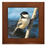 Chickadee Framed Tile