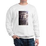 Humorous Greek Beer Quote Sweatshirt