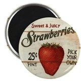 Pick Your Own Strawberries Magnet