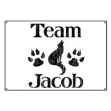 Team Jacob 3 Banner