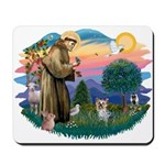 St Francis #2/ Yorkie #13 Mousepad
