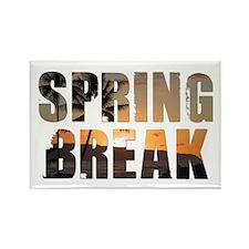 Cute Spring break 2011 Rectangle Magnet