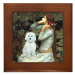 Ophelia (#1) - Maltese (B) Framed Tile