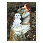 Ophelia (#1) - Maltese (B) Small Poster