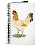 Penedesenca Hen Journal