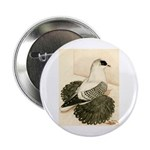 """Swallow Pigeon 2.25"""" Button (10 pack)"""
