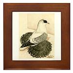Swallow Pigeon Framed Tile