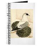 Swallow Pigeon Journal