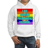 I AM AGAINST PREMARITAL FELCHING. Jumper Hoody